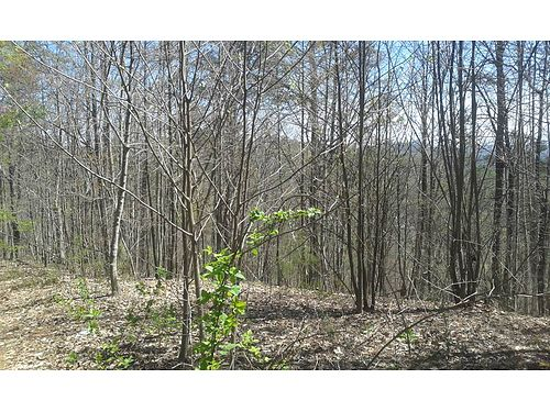 3 ACRES SEVIERVILLE TN 1415 Little Cove Rd wooded  partially cleared propert