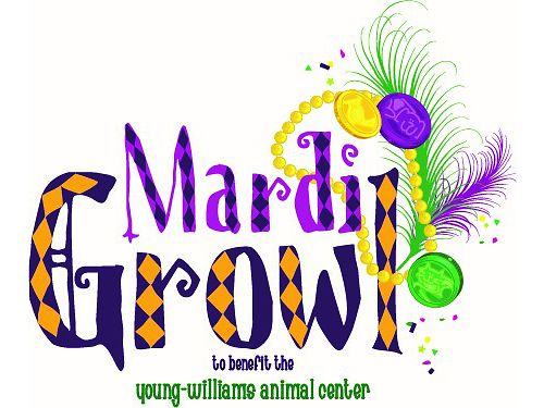 You  Your Dog are Invited to the 10th Annual MARDI GROWL PARADE  FESTIVAL in Downtown Knoxville