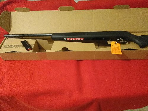 RIFLE Savage 22 10 shot semi-automatic polymer body brand new in box 275 865-200-6290 see p