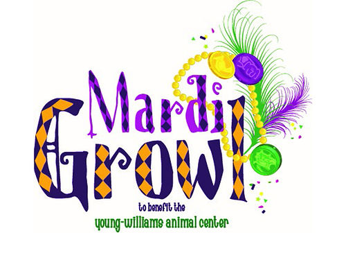 You  Your Dog are Invited to the 12th Annual MARDI GROWL PARADE  FESTIVAL in Downtown Knoxville
