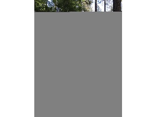 REDDING AREA 22 acres very tiny cabin trees meadow 2 minutes from sandy beach on river 47000