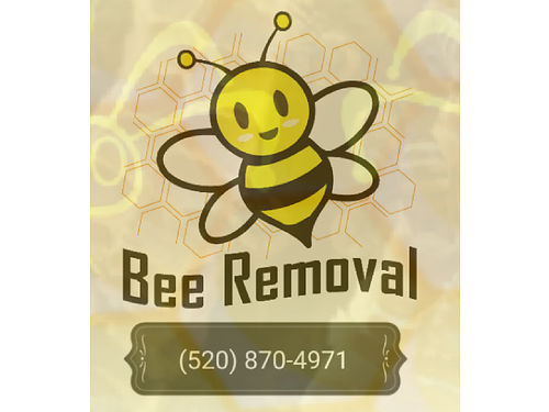 Buzzing Best Farms Is A Tucson Arizona Based Company We Remove Bees On Residential And Commercial P