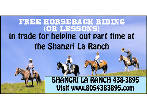 FREE HORSEBACK RIDING ANDOR RIDING LESSONS in trade for helping out part time at the Shangri La Ra