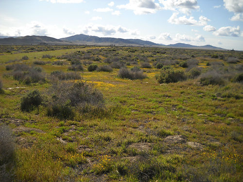 CALIFORNIA VALLEY Unit 9 Lot 102 25 Acres Power at the lot 4799 Cah OR 1499 Down 299 per m