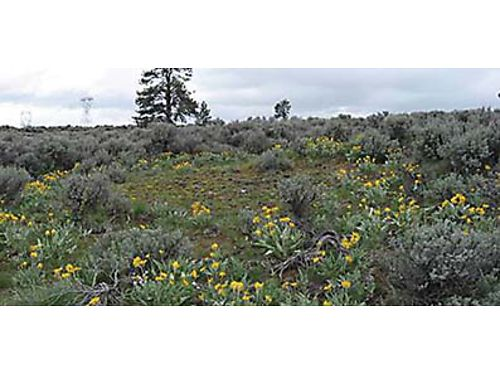 ACRES OF WILDFLOWERS Great property for recreational fun Minutes to Badger Mtn