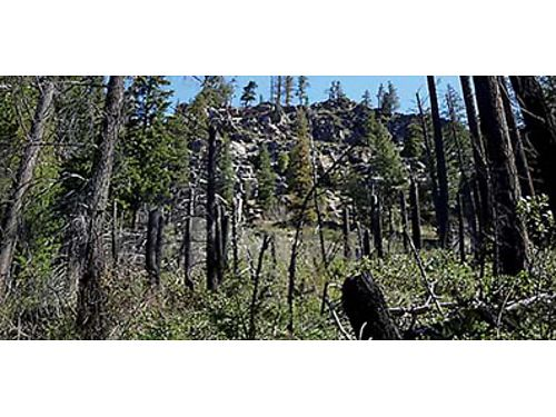 GREAT FIND Surrounded by forest with many possibilities sits 1931 acres in Leavenworth with water