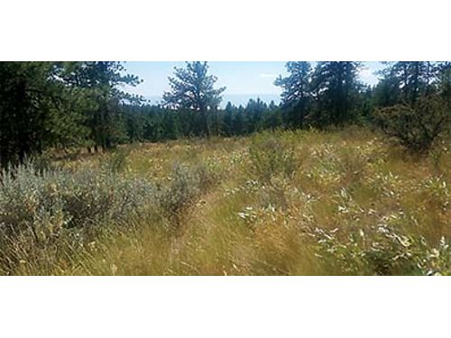 ATTENTION BUILDERS For Sale by Owner 521 Acres Badger mountain South East exposure has power and