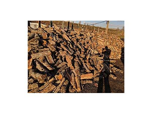 CARLOS FIRE WOOD for sale Completely spilt Cherry 400 cord Apple wood 500 cord Call 509-630-854