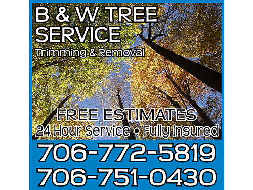 B&W TREE SERVICE WE PROVIDE 24 HOUR ...