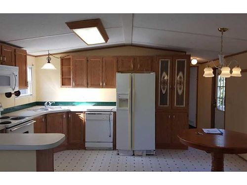 32 Reduced Short Cash Sale NO CREDIT CHECK FINANCING 16X80 Like New Ceiling Fans Appliance Gla