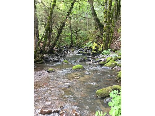 REDDING AREA 1 acre on year round creek trees mostly land useable land 9000 down 330 month