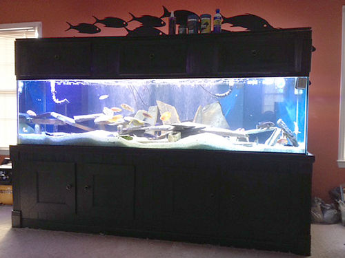 AQUARIUM 280 gallon show tankaquarium includes tank wetdry sump heater metal halides 5 T8s