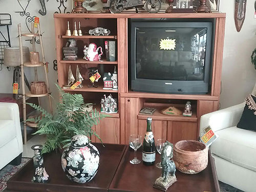 ENTERTAINMENT CENTER oak shelves with storage door below Free TV comes with it 100 423-207-6676