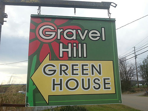 GRAVEL HILL GREENHOUSE Wide Vairiety of flowers herbs shrubs vegetable plants etc Mon-Sat 9am-6