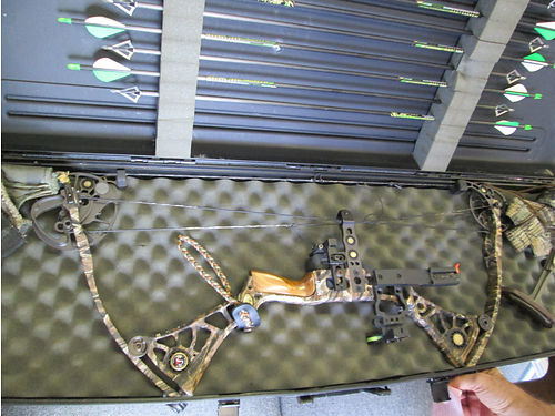 MATTHEWS BOW DXT 295 draw 60lb draw weight righ handed quiver 8 easton arrows and hammer broadh